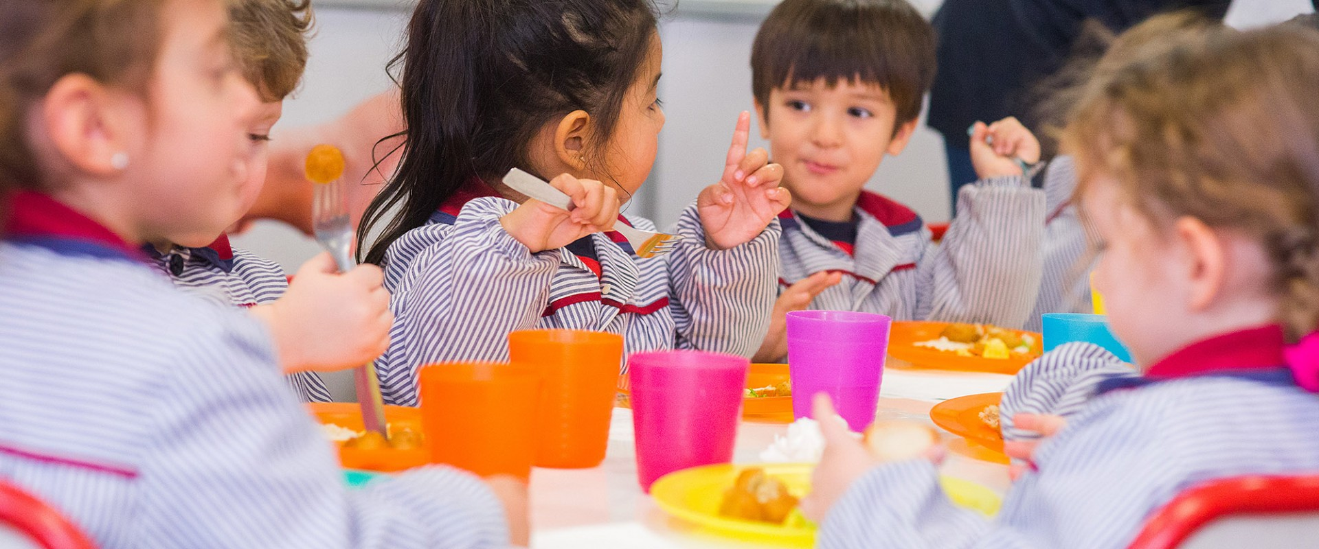 Pre primary education- first cycle